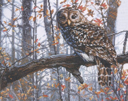 Dimensions Wise Owl Cross Stitch Kit - 35.5cm x 28cm