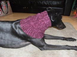 Greyhound snood