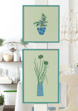Anchor Aromatic Plants - Pictures - Chives and Juniper - 0060044-00901_05 -  Downloadable PDF