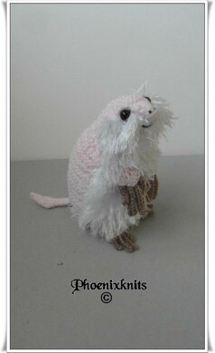 Armo The Pink Fairy Armadillo