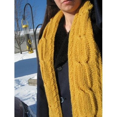 Chrysopoeia Reversible Cabled Scarf