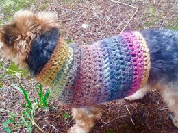 Simple Small Dog Sweater