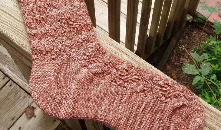 Plenocaris Socks by Mary Hough