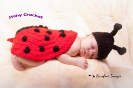 Lady bird / lady bug baby photo prop