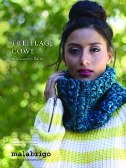 Treillage Cowl in Malabrigo Rasta - Downloadable PDF