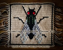 Entomology Collection Mosaic Square - House fly