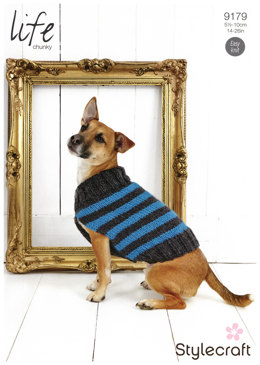 Striped Dog Coat in Stylecraft Life Chunky - 9179
