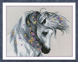 Oven A Playful Horse Cross Stitch Kit