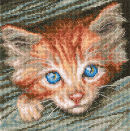 Rto Fluffy Observer Cross Stitch Kit
