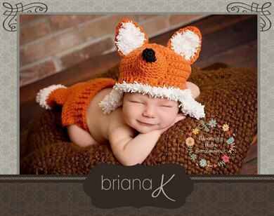 Fox Newborn - 12 Month Hat and Diaper Cover