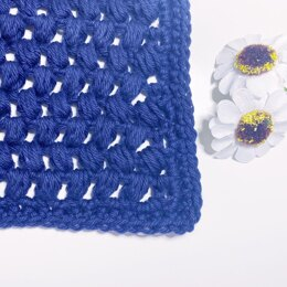 Washcloth 04 Blueberry