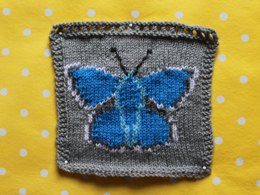 Common Blue Butterfly Intarsia Square