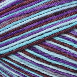 Plymouth Yarn Andes Socks