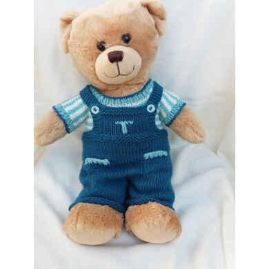 Teddy bear dungarees and top