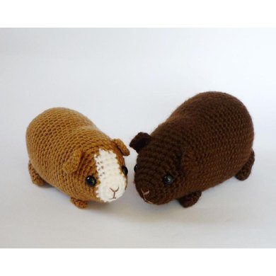 Guinea pig combo pack