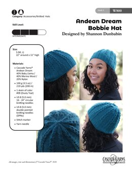 Bobbie Hat in Cascade Yarns Andean Dream - W800 - Downloadable PDF