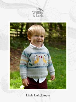 Willow & Lark Nest Little Lark Jumper 12 Ball Project Pack