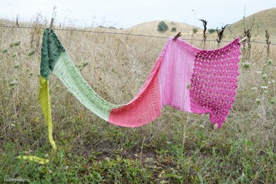 The Flower Fields Shawl