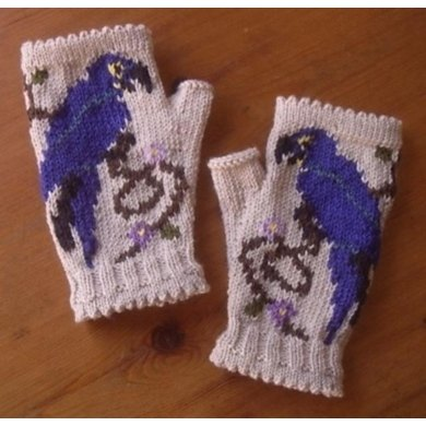 Blue Macaw in the Flowers fingerless mitts