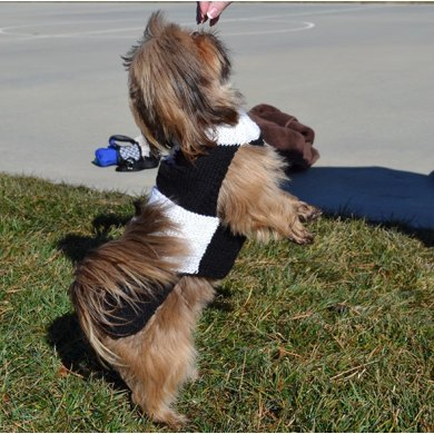 Easy-On Dog Sweater