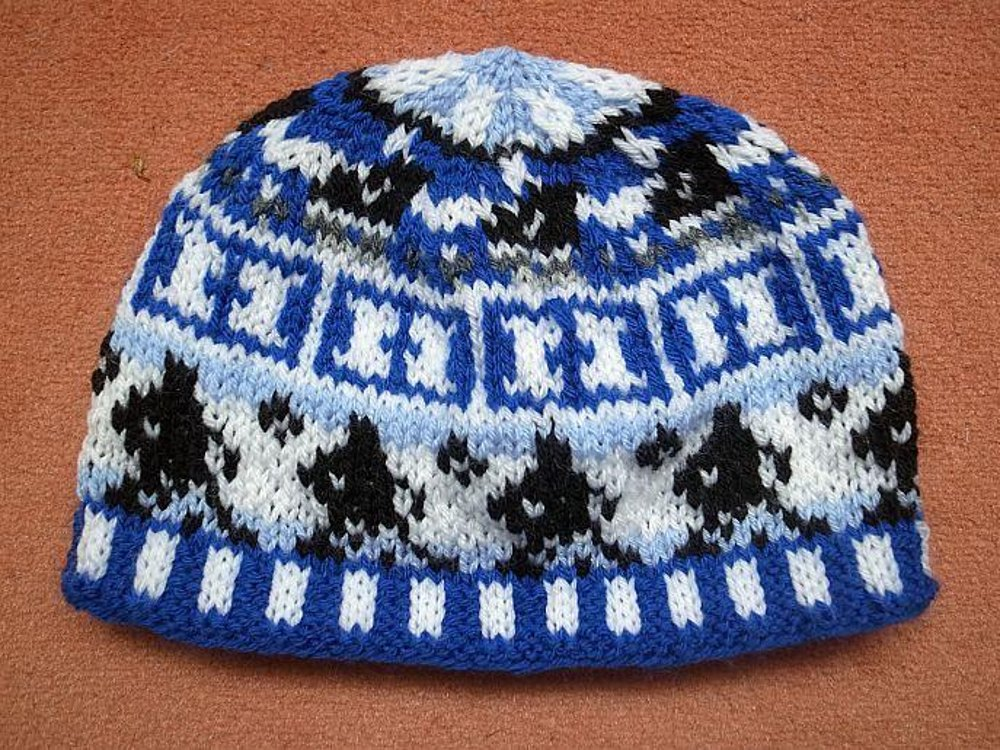Hockey Knitting Patterns : Ice hockey baby beanie Knitting pattern by Sandra Jager