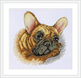 Merejka French Bulldog Cross Stitch Kit - 20cm x 20cm