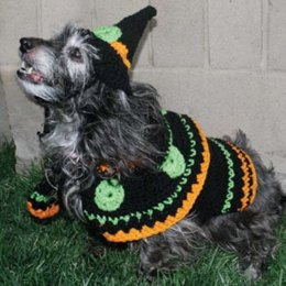 Dog's Crochet Witch Costume in Red Heart Super Saver Economy Solids - WR1093