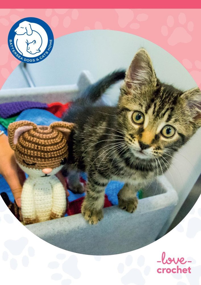 Knitting Kittens Battersea : Hazel the cat for battersea crochet pattern by