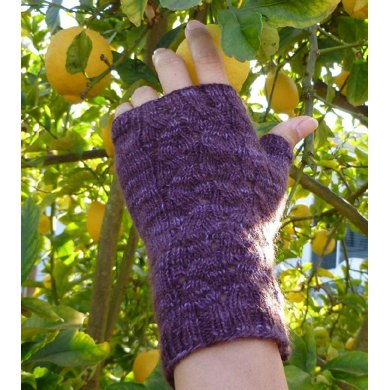 February Frost Fingerless Gloves