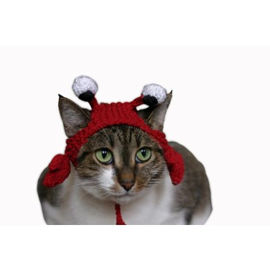 The Crabby Cat hat