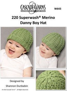 Danny Boy Hat in Cascade 220 Superwash Merino - W643