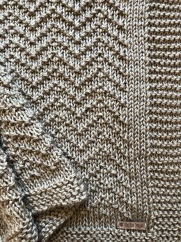 """""""Let's get our Chevr-on!""""  Blanket Pattern"""