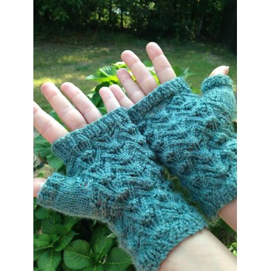 Reptile mitts