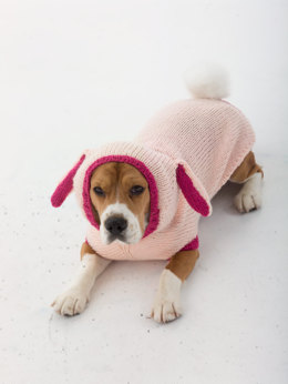 Bunny Dog Costume in Lion Brand Vanna's Choice - L30273