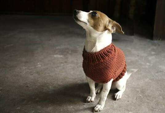 Knit with Alice Juno Jumper