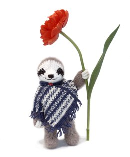 Sloth with a Poncho