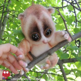 109 Slow Loris animal