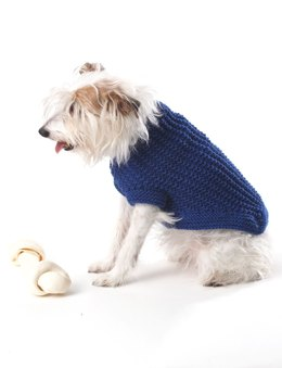 Knit Dog Coat in Bernat Super Value