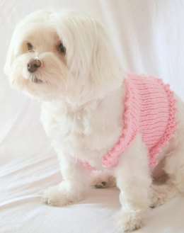 P01 Fancy Dog Sweater