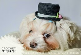 Wedding top hat for dog