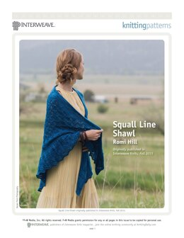Squall Line Shawl in Malabrigo Worsted - Downloadable PDF