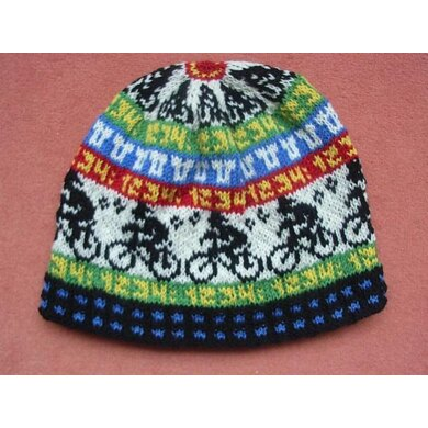 Cycle race beanie