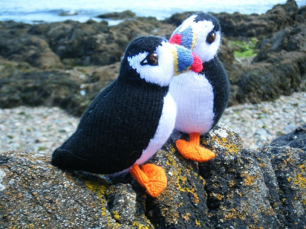 Puffin Knitting Pattern By Sara Hall Crochet Patterns Lovecrochet