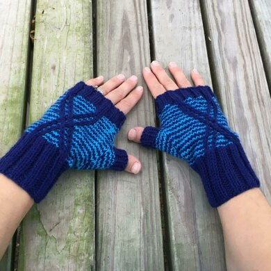 Argiope Mitts