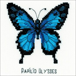 RiolisNymphalidae Butterfly 5in x 5inCross StitchKit