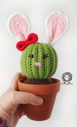 Penny the Bunny Cactus