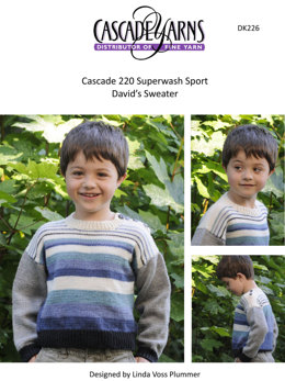 David's Sweater in Cascade 220 Superwash Sport - DK226