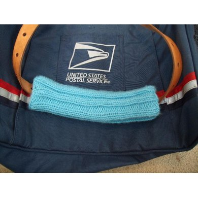 USPS Shoulder Strap Pad Cozy