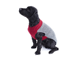 Dog Coats in King Cole Pricewise DK in King Cole - 5570 - Leaflet