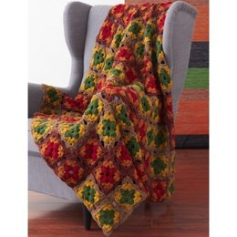 Fall Colors Granny Blanket in Patons Canadiana